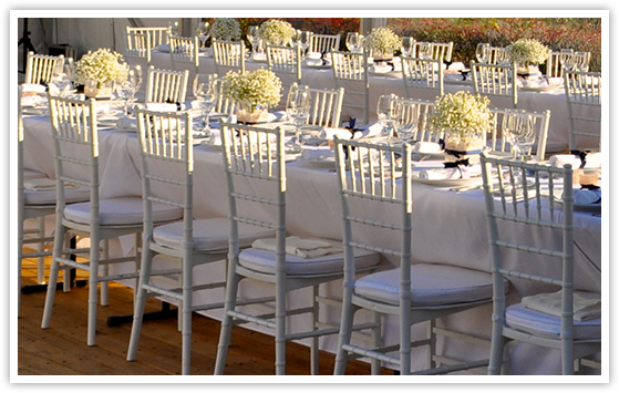White Tiffany Chair u0026 white cushion & Party Event u0026 Marquee Hire Sydney - Chair Hire Co